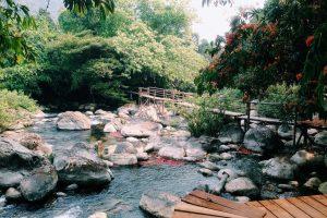 Đồng Hới-Động Thiên Đường-Suối Nước Moọc-Hàng Tối-Động Phong Nha-Tham quan Huế-Bà Nà Hills (4N3Đ)
