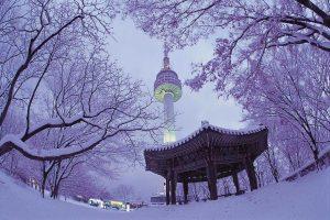 [Hàn Quốc] Du Xuân Seoul – Ski ReSort – Đảo NaMi – Công Viên EverLand – Hero PainTers Show