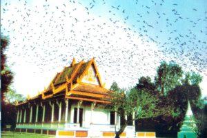 Sóc Trăng: Chùa Dơi – Ngôi chùa mang đậm bản sắc của người Khmer